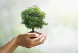 Czynniki środowiskowe, które negatywnie wpływają na nasze zdrowie